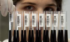 Число инфицированных вирусом MERS в Южной Корее достигло 122
