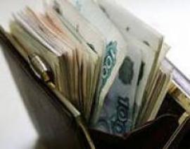 Российские сенаторы сократили свою зарплату