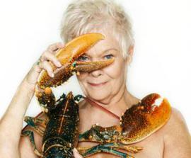 Британская 80-летняя звезда снялась голой ради животных - ФОТО