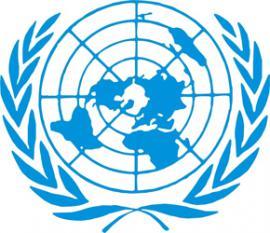 ООН выделила $100 млн на гуманитарную помощь в Сирии и еще 11 странах