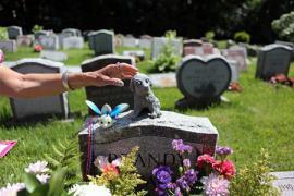 Кладбище домашних животных около Нью-Йорка признали историческим