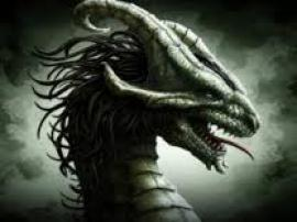 Жительнице Нидерландов из-за редкого заболевания все люди казались драконами